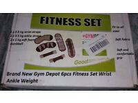 GYM DEPOT 6pcs Fitness Set Wrist Ankle Weight