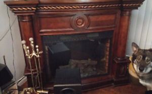 Twin Star Electric Indoor Fireplace