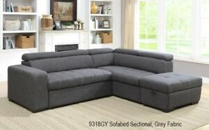 Contemporary 2pc Sectional with Pull-out Sofa Bed