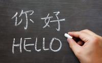 one-to-one Language tutor-Chinese (Mandarin)