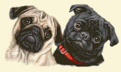 2 PUGS, BLACK & FAWN, Dogs, Puppies ~ Full counted cross stitch kit