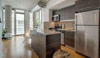 Roommate for Downtown Ottawa Apartment