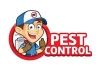 Pest Control Services London, Essex & Herts. Guaranteed Low Prices!!!