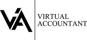Professional Tax Prep Online - Virtual Accountant