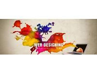 Professional Website developer get your own website now affordable prices
