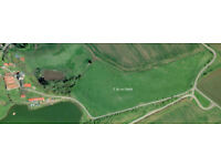 7 acre field to let for grazing, suitable for grazing cattle. Kinghorn Loch, Fife