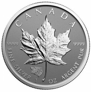 ON SPECIAL - Grizzly Bear Privy Coin !!