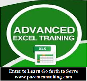 Advanced Excel Training for Financial Analyst -The Professionals