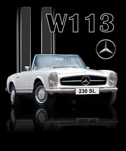 MERCEDES ** W113 ** LEFT HAND DOOR ONLY 230SL, 250SL, 280SL