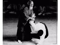 Aikido Classes