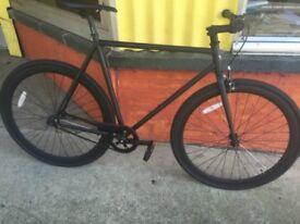 Single Speed Mens Large Road Bike/Fixie Bike/Fixed gear bike