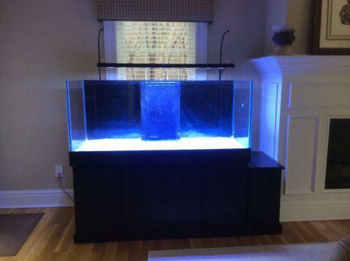 150 gallon fish tank ebay for 75 gallon fish tank dimensions