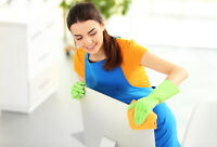 Experienced Cleaning Lady *York Region*