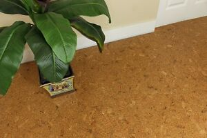 Autumn Leaves Floating Cork floor - $$ 3.29 a Square Foot.