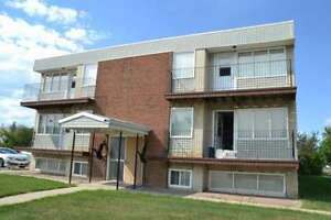 1 Bed/ 1 Bath Available Today!