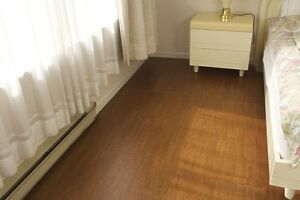 Beat the cold. Beat the heat. Cork floors, warm and cozy.