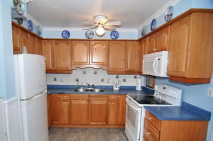 A nice Condo in East Windsor - Available now