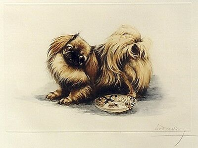 PEKINGESE PEKE TOY DOG FINE ART ENGRAVING PRINT - by French Artist Leon Danchin