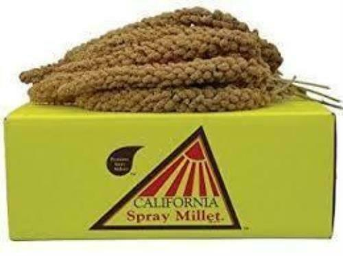 California Golden Spray Millet - beloved by all Birds Parrot Budgie Food Treats