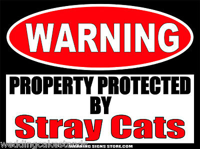 Stray Cats Funny Warning Sign Bumper Sticker Decal DZ WS373