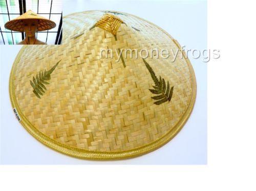 Asian Hat  66bf8b191bd8