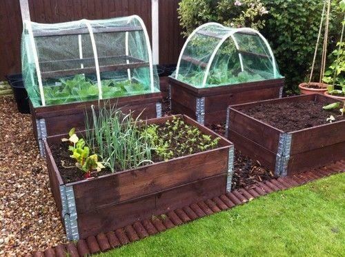 Raised Vegetable Bed Garden Amp Patio Ebay