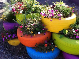 Free Used tyres for garden pots planting and garden diy