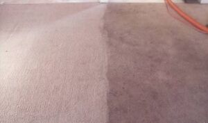 Elite Carpet Cleaning Hervey Bay Dundowran Fraser Coast Preview