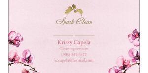 Spark Clean