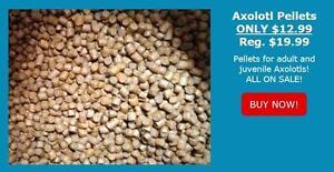 Axolotl Food Pellets $12/LB