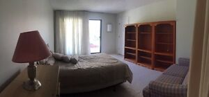 Large room for student/young professional