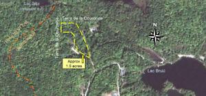 Terrain à vendre accès bord de l'eau en Outaouais