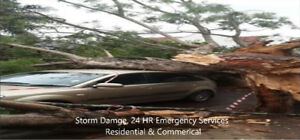 Affordable Tree Service - Storm Damage - Fallen Tree/pruning