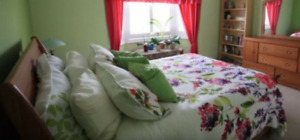 Gorgeous 1 Room For Rent $650