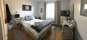 SUBLETTING 1 BEDROOM DOG-FRIENDLY APARTMENT - AVAILABLE JAN 1ST