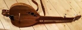 The Unique 5 string Haystack woodtop gourd short scale banjo.