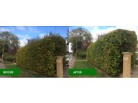 Local gardener - Hedge & Grass cutting - Garden tidy up - Lawn mowing - Pressure Washing