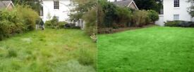 Lawn Mowing - Grass cutting - Garden maintenance , Tidy up, Gardening services - Local gardener