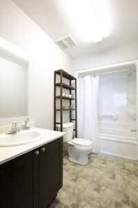 Luxury 2 Bedroom Student Rentals - Wifi & AC Included -MUST SEE! Kitchener / Waterloo Kitchener Area image 7