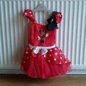 Minnie Mouse Fancy Dress Kids