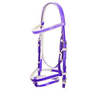 Purple PVC Hanoverian/Eventing Bridle with reins Westbrook Toowoomba Surrounds Preview
