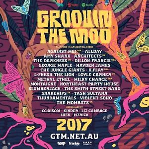 2x groovin the moo maitland 18+ tickets Tanilba Bay Port Stephens Area Preview