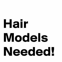 Needing 2 models on monday for an all over semi Currambine Joondalup Area Preview