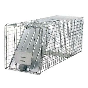 Wanted asap! Free Animal trap cage Carey Bay Lake Macquarie Area Preview