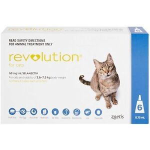 Revolution for Cats & Rabbits 10 Pack Pooraka Salisbury Area Preview