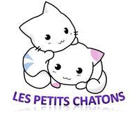 Service de garde les petits chatons