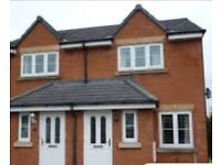 Need house/ flat for rent