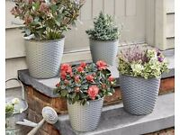 Rattan effect finish - Set Of 4 Round Grey Planters