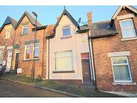 Superb 2 bedroomed mid terraced house in Southwick, Sunderland