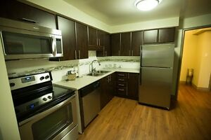 Newly Renovated 3 Bedroom Student Apartments at 675 Richmond St